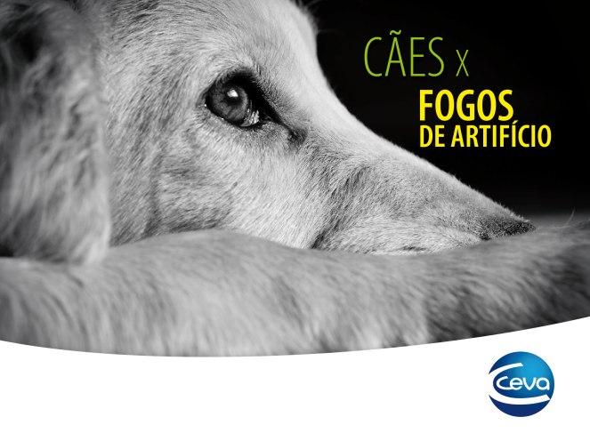 28 CÃES X FOGOS-01